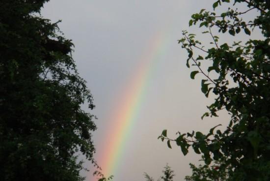 regenbogenk